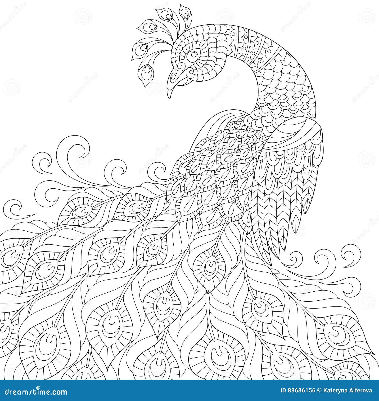 Dekorativnyj Pavlin Vzroslaya Antistress Stranica Rascvetki Illyustraciya Vektora Illyustracii Naschityvayushej Vzroslaya Pavlin 88686156