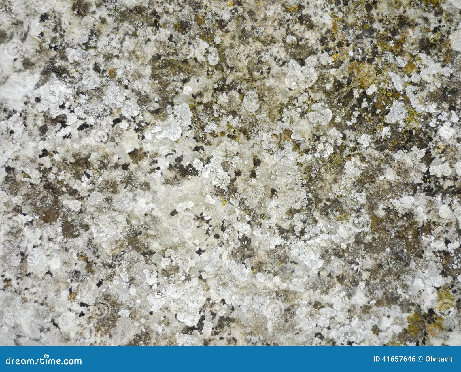 Естественная предпосылка текстуры камня