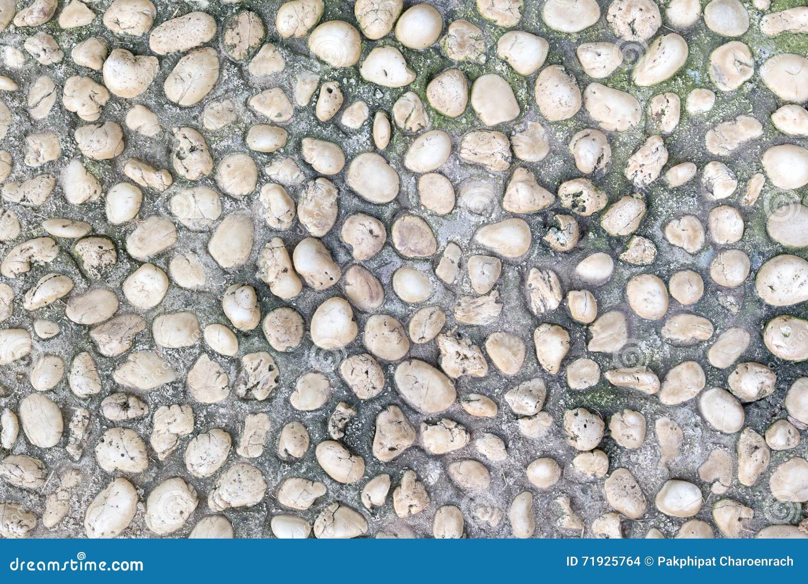 Естественно отполированные старые белые камешки утеса делают по образцу текстуру