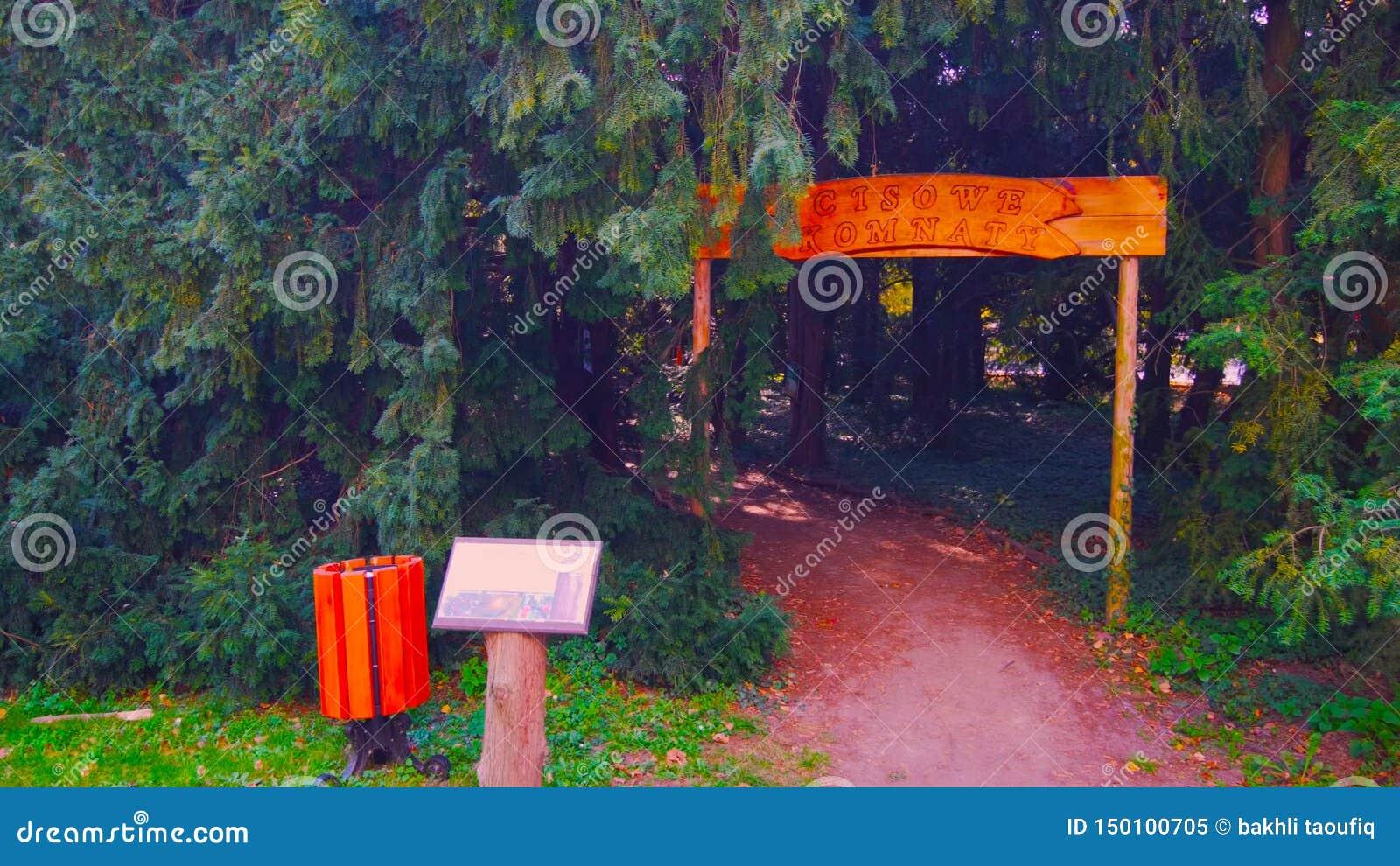 Естественный вход входа свода в изгородь в орнаментальном garde 2019