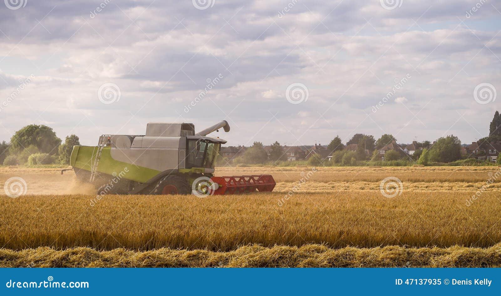 деятельность жатки поля зернокомбайна