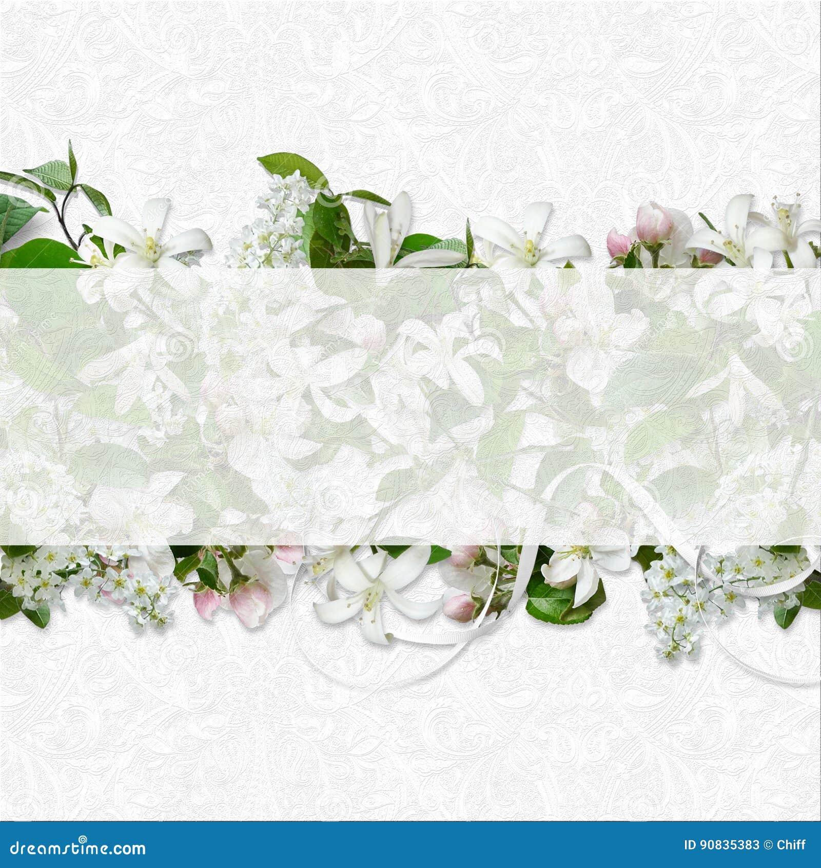 Нержавейка цвет ral