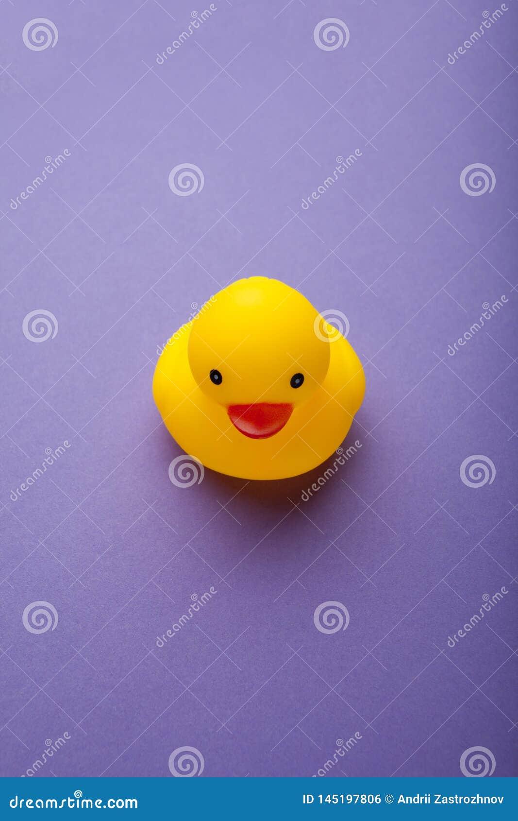 Желтая смешная игрушка утки на пурпурной предпосылке, вертикальной