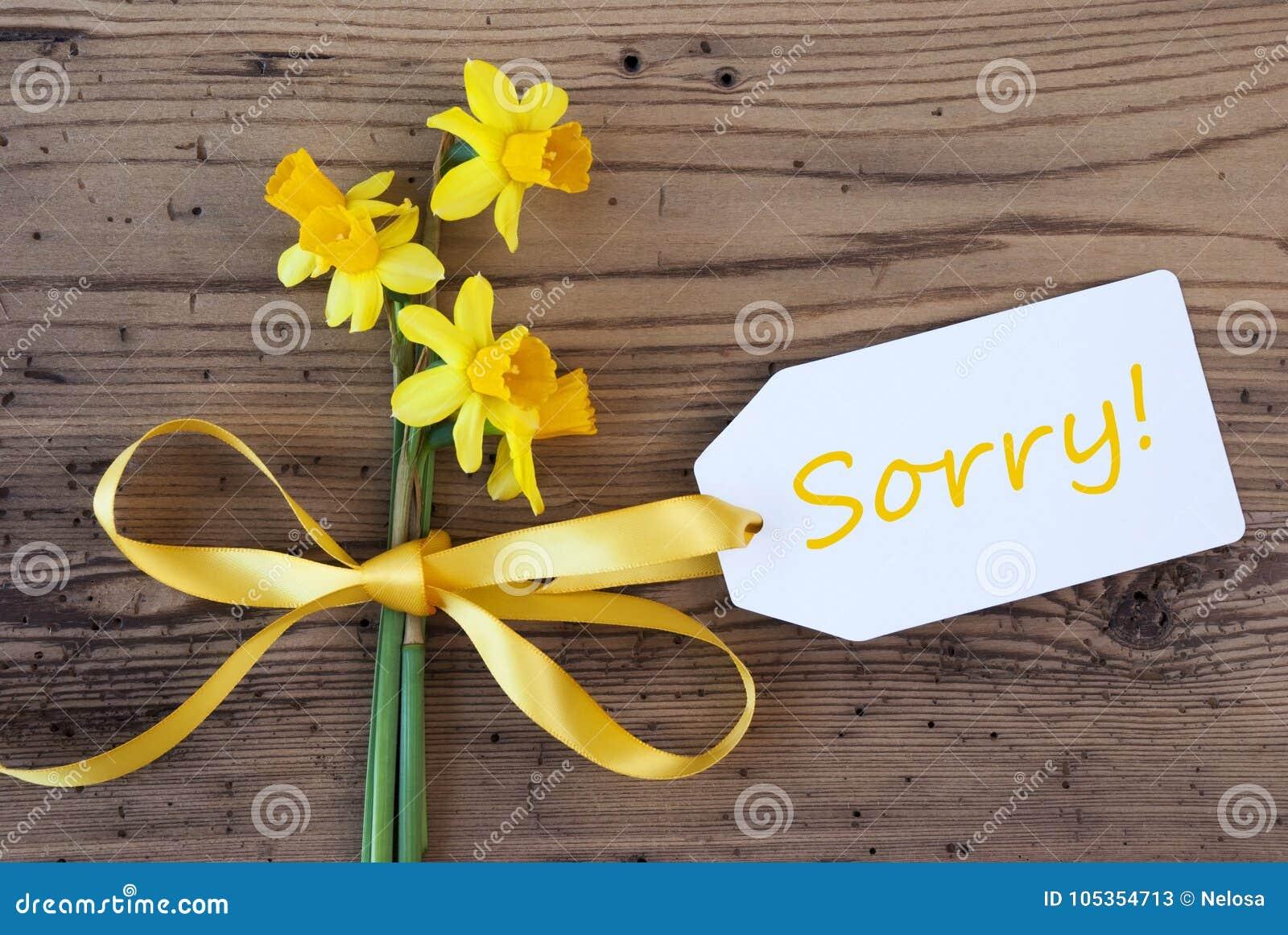 Желтые Narcissus весны, ярлык, отправляют СМС к сожалению