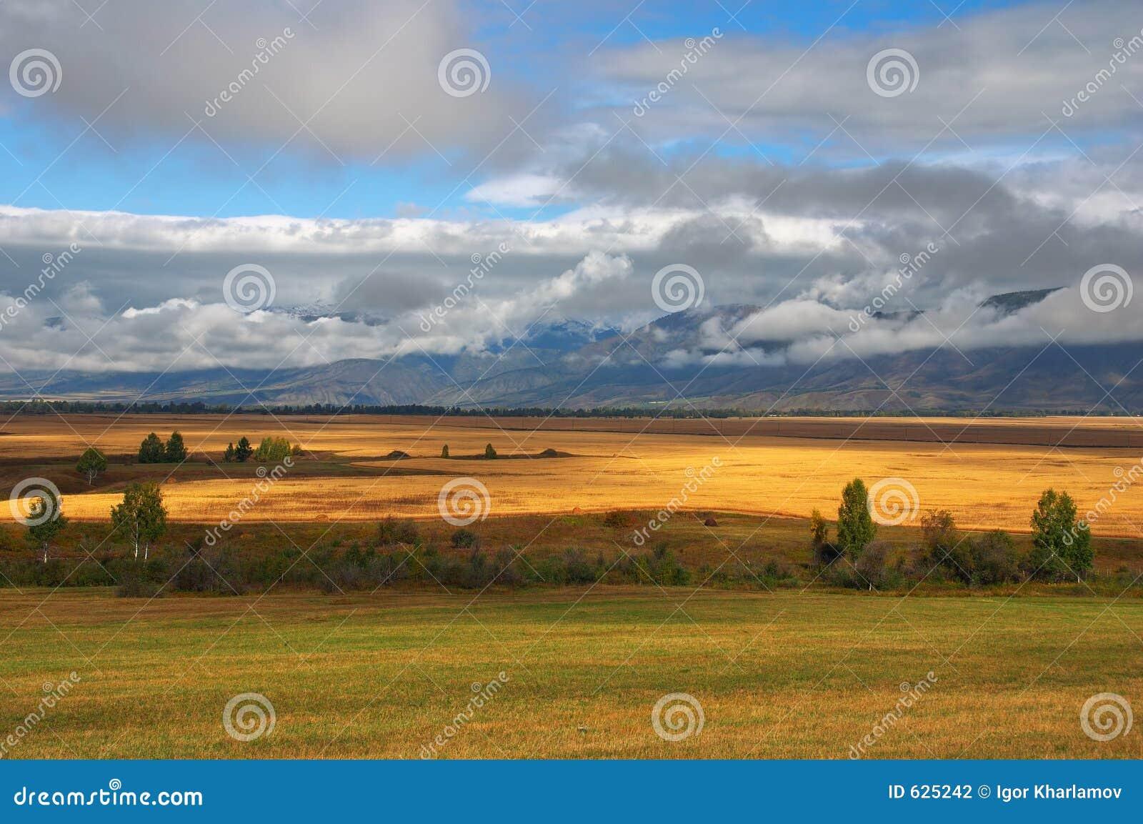 Download желтый цвет гор полей облаков Стоковое Фото - изображение насчитывающей лето, гора: 625242