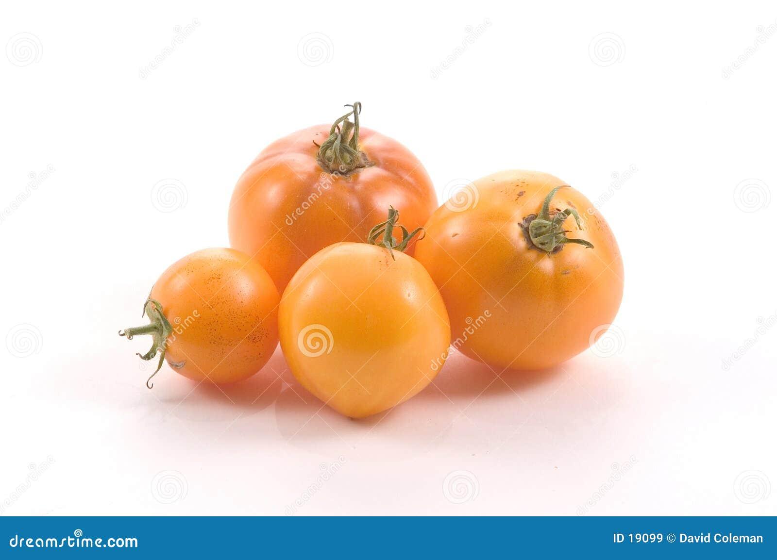 желтый цвет томатов