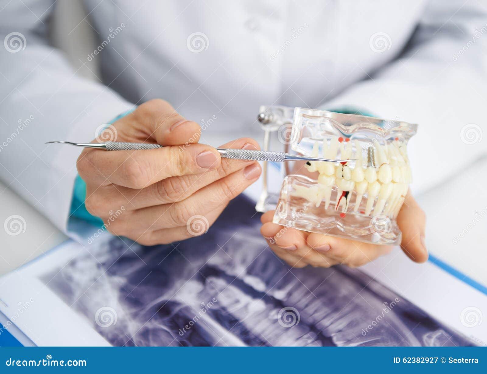 Женский дантист