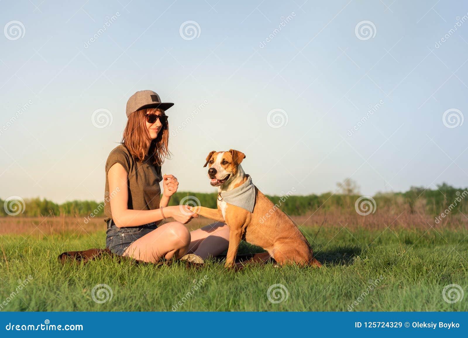 Женское предприниматель собаки и натренированный терьер Стаффордшира давая лапку