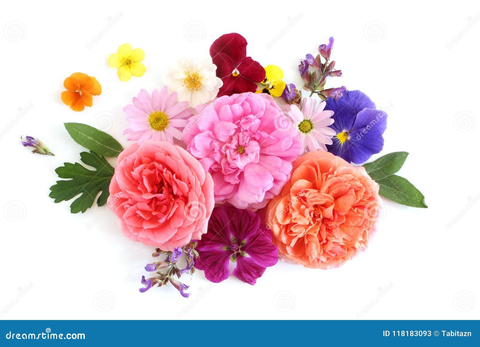 Женственный флористический состав Букет съестные цветки и травы одичалых и сада Старые розы, шалфей, pansy, маргаритка, просвирни