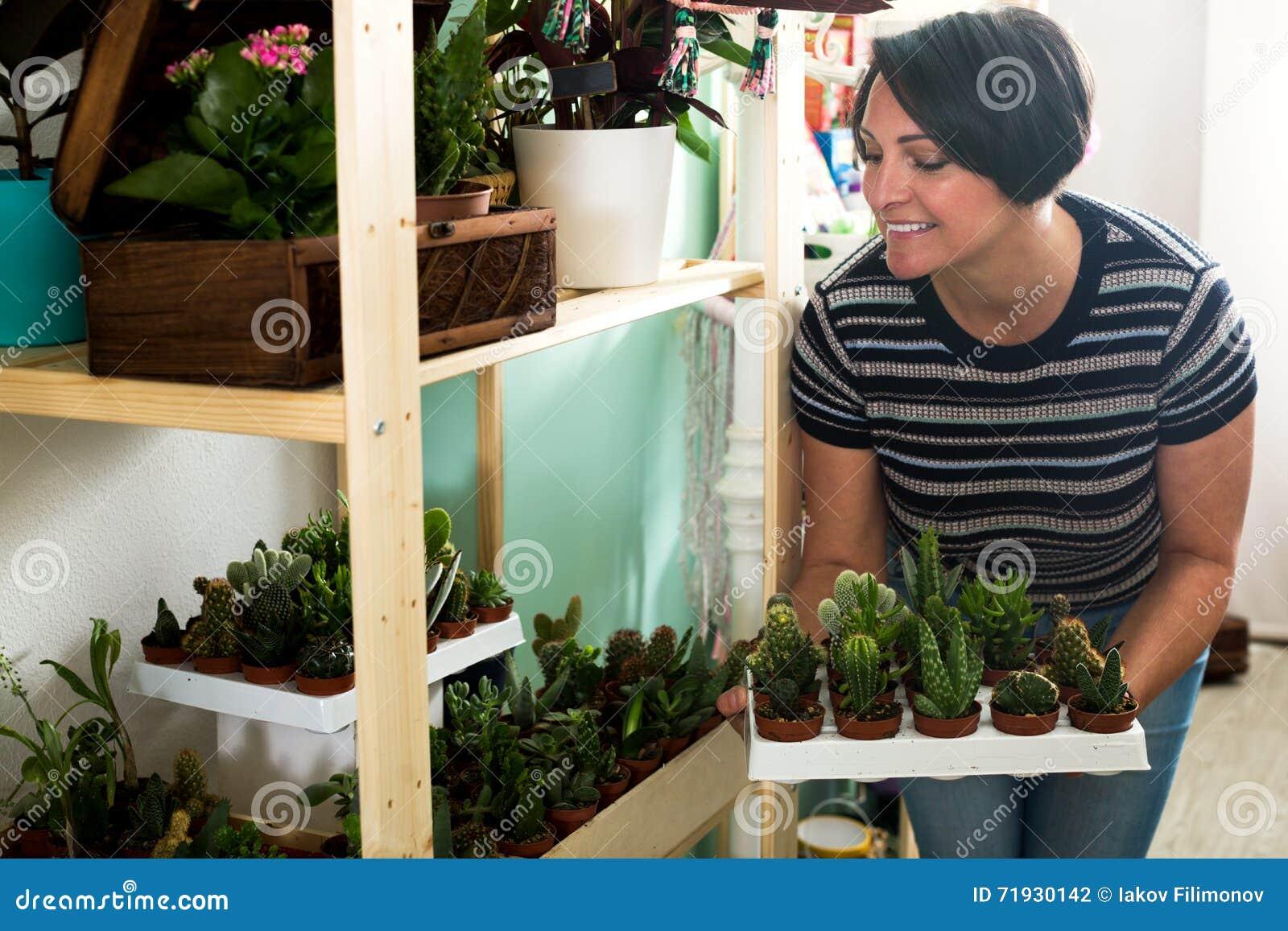 Женщина держа поднос с кактусами