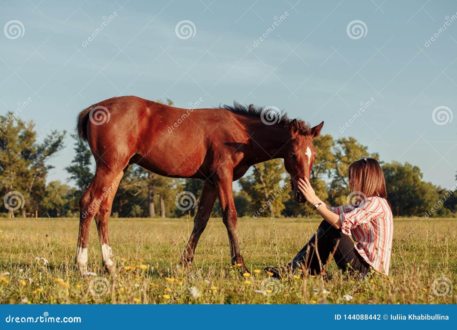 Женщина кормит осленка от ее рук