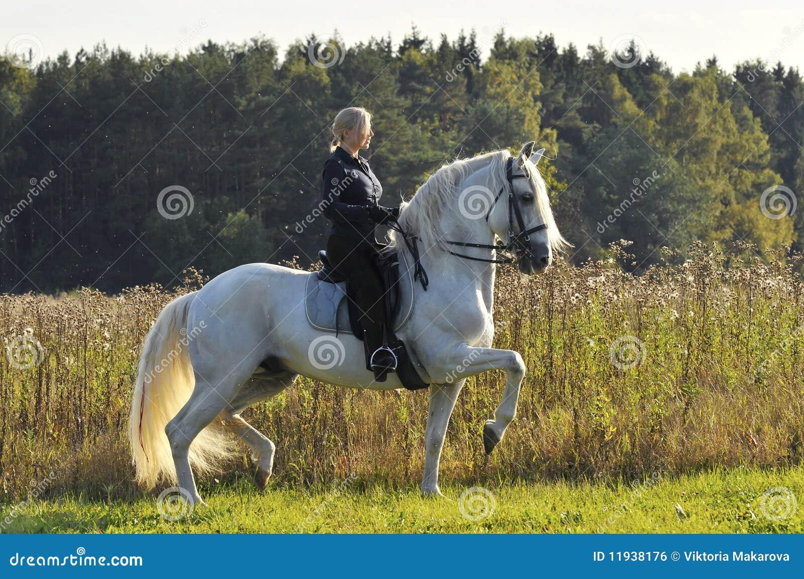 женщина лошади белая