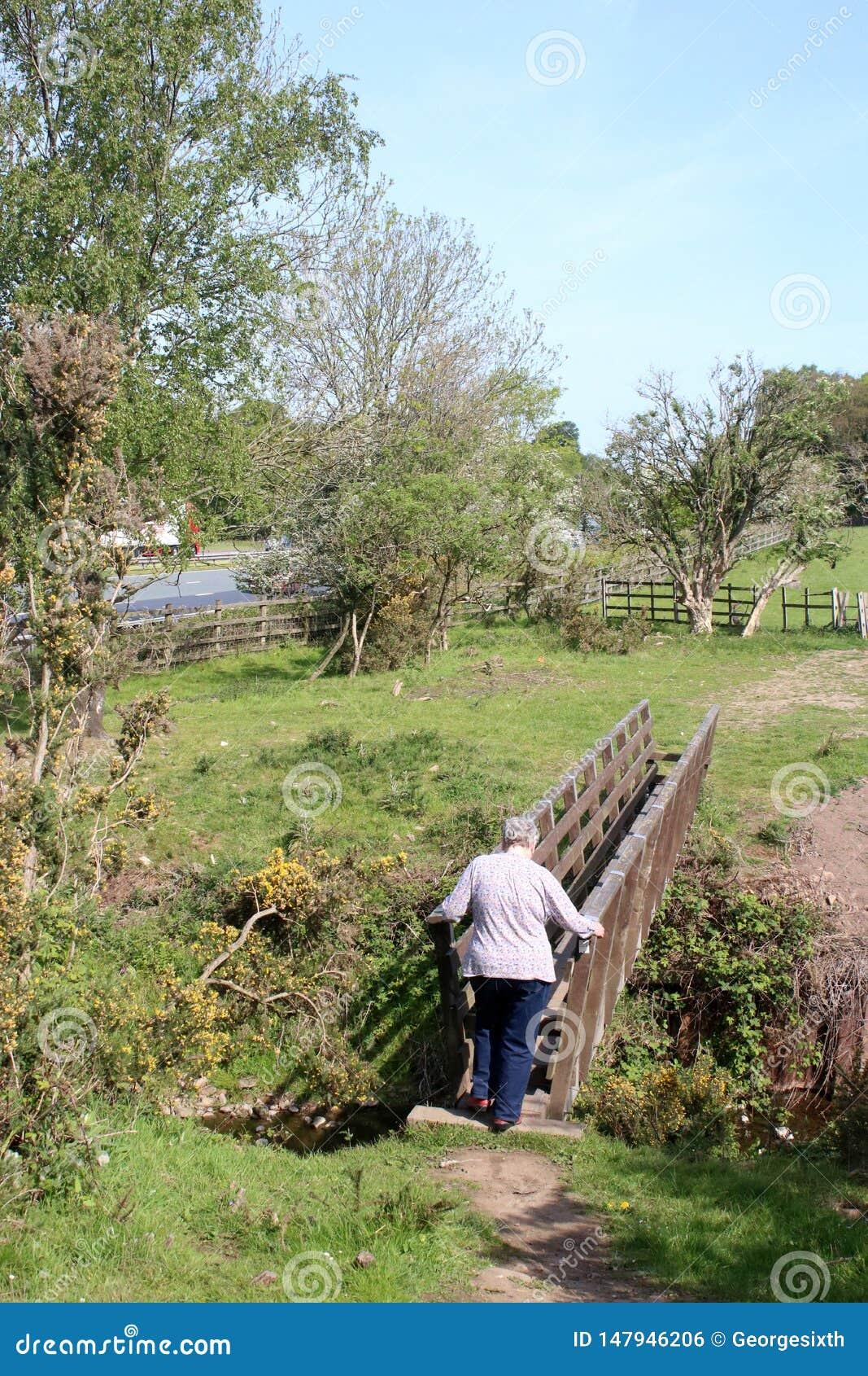 Женщина на деревянном footbridge, сельской местности Lancashire