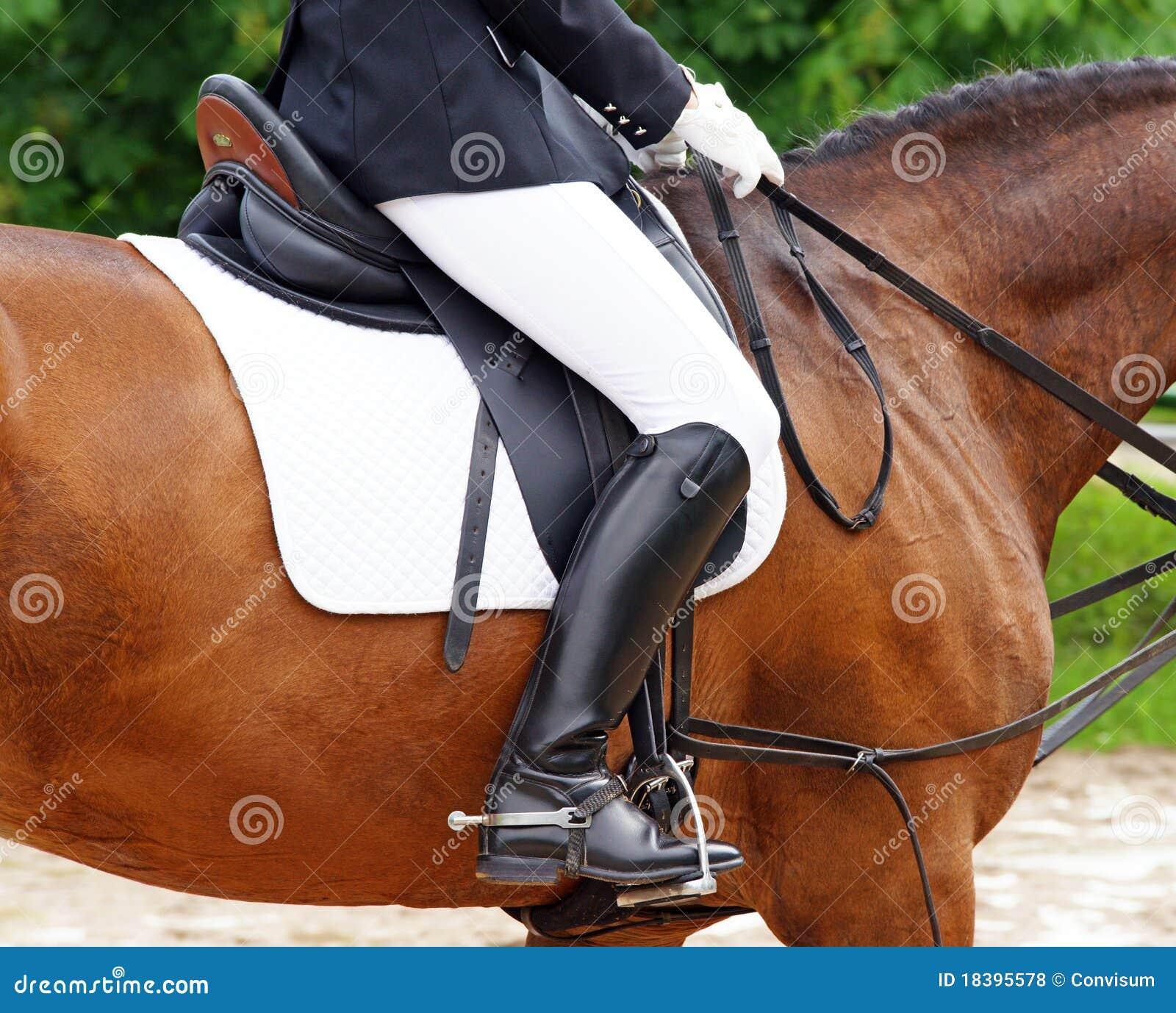 женщина jodhpurs лошади