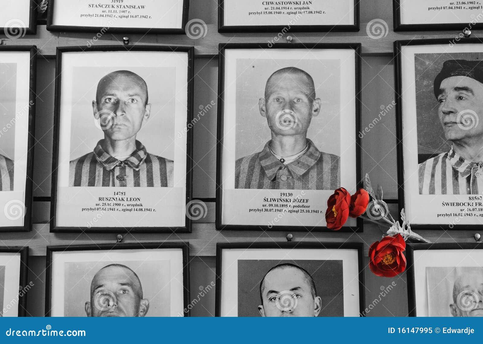 жертвы auschwitz