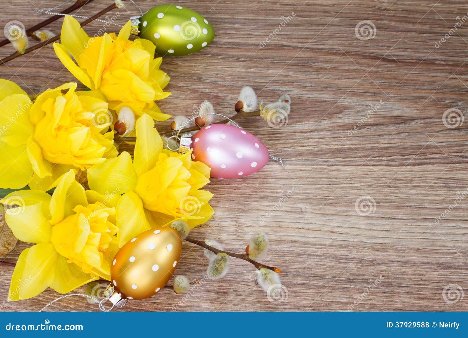 Желтые цветки narcissus с catkins