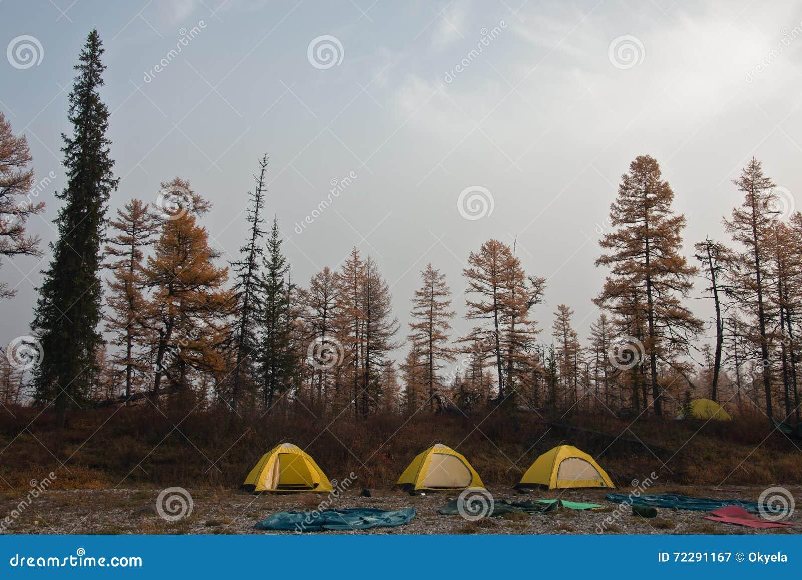 Download Желтый шатер на банках сибирских рек Taiga Стоковое Изображение - изображение насчитывающей automobiled, шатер: 72291167