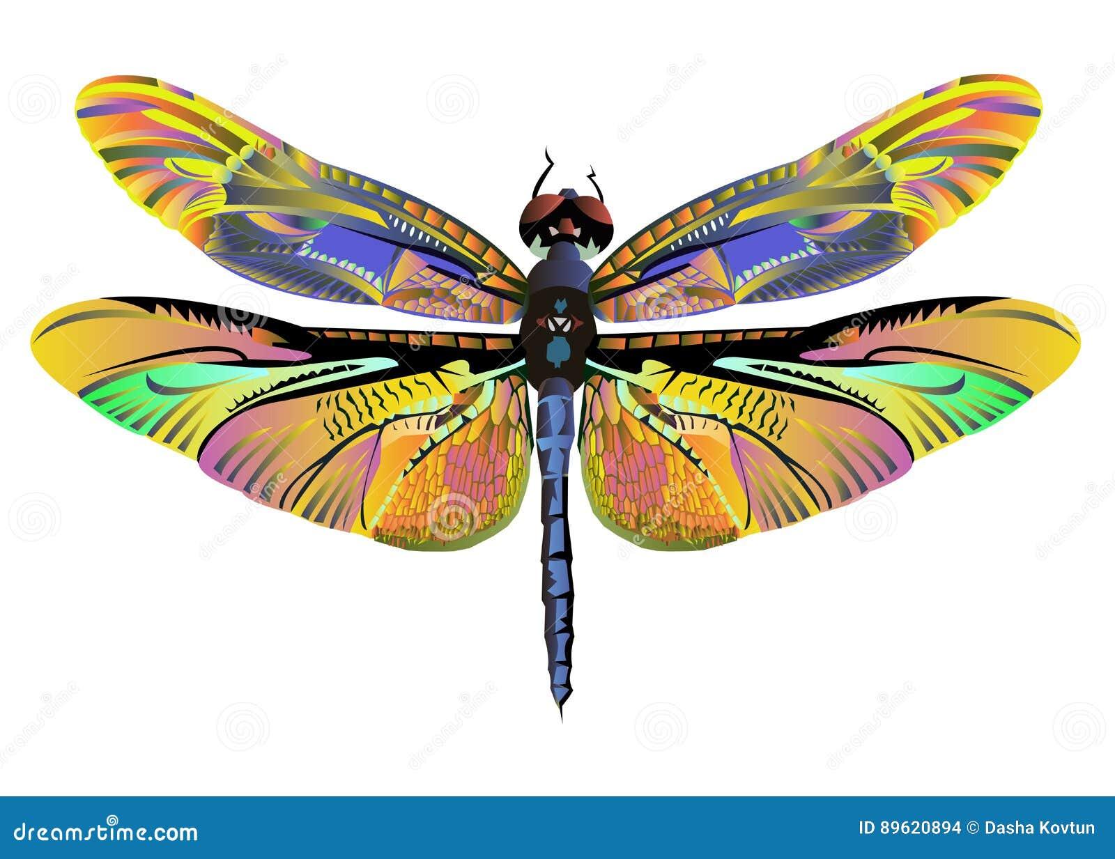 Живая природа природы dragonfly искусства цвета вектора