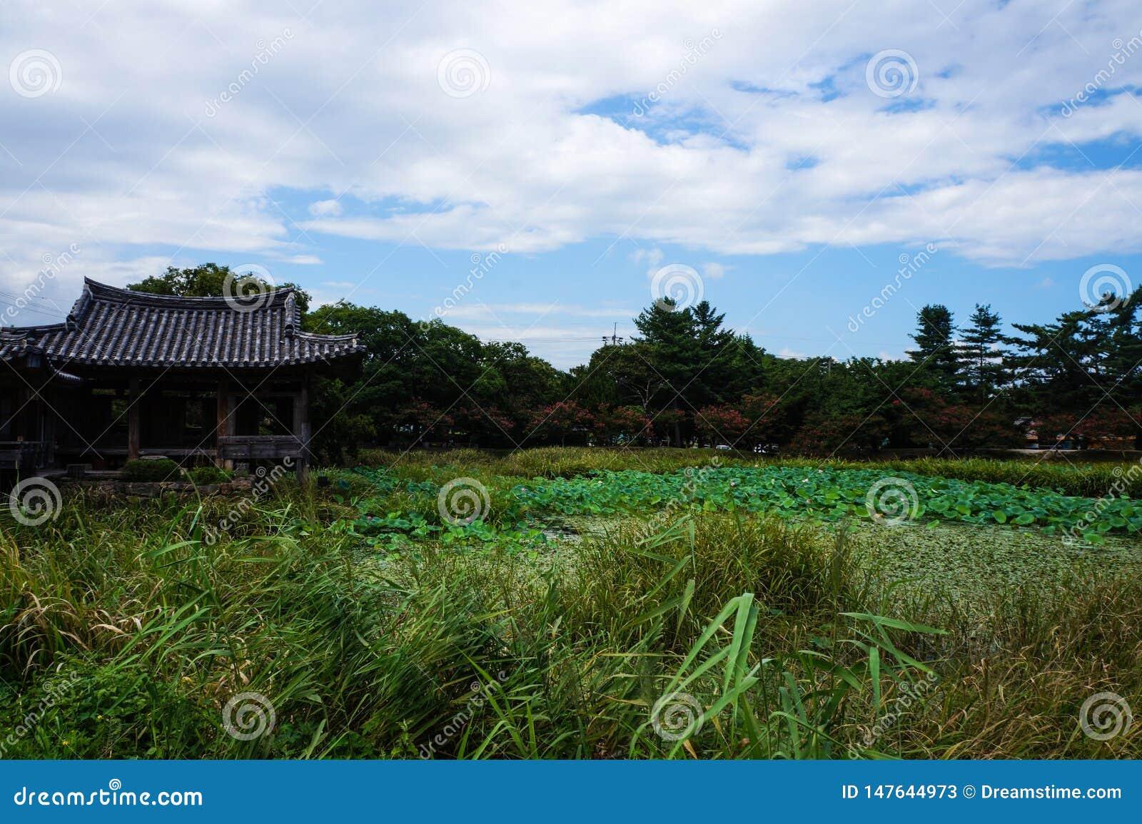 живописная местность пруда Южной Кореи Кёнджу