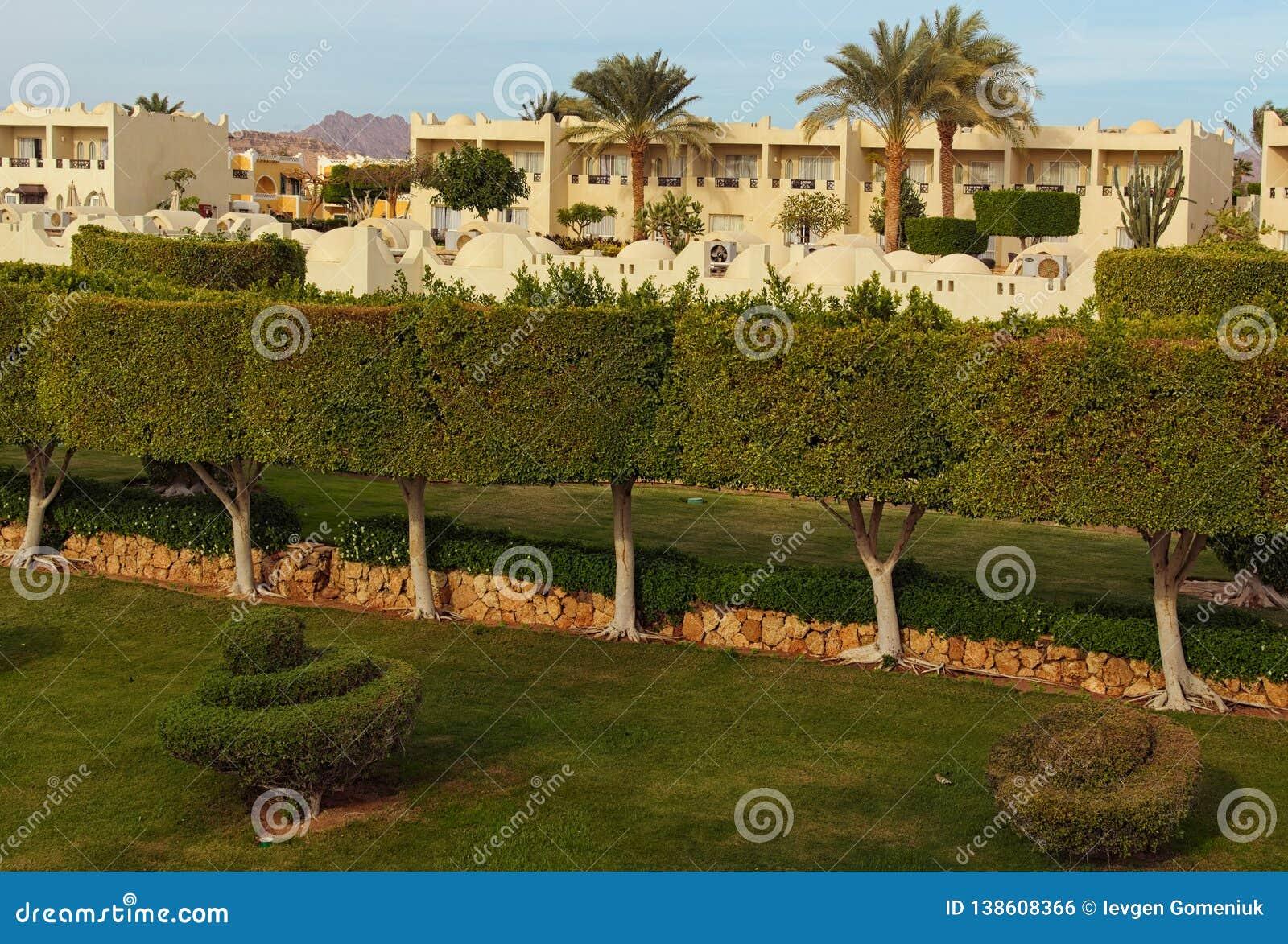 Живописный взгляд утра тропического здания курорта роскошного отеля с пальмами и кустами шейх sharm Египета el
