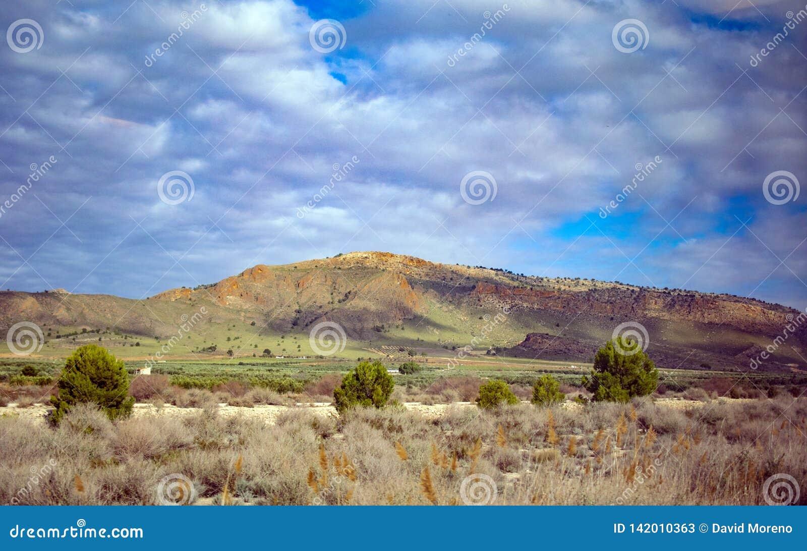 Живописный южный ландшафт с горами