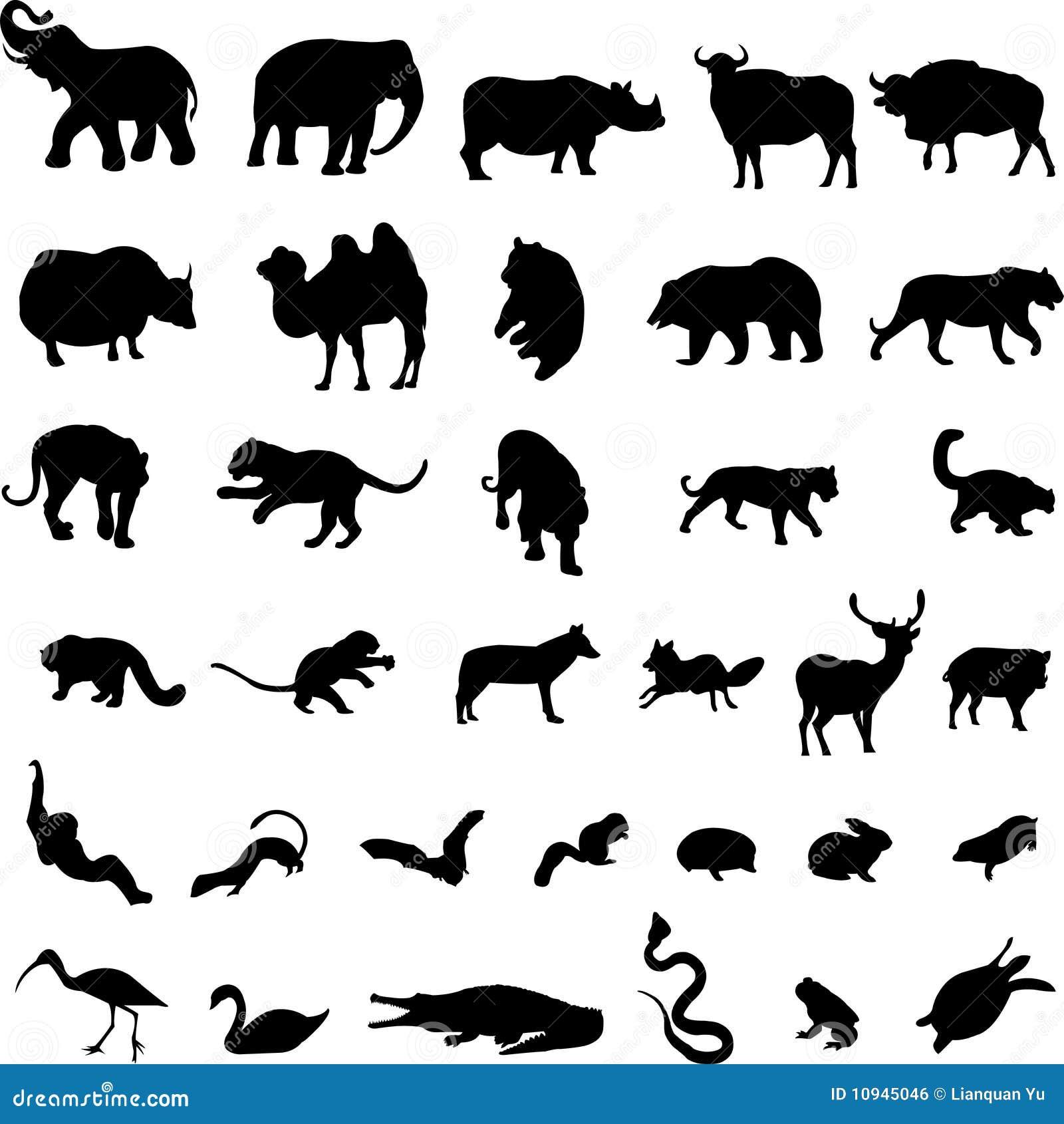 животные азиатские