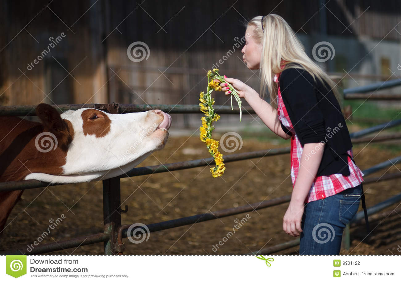 животные женщины молодые