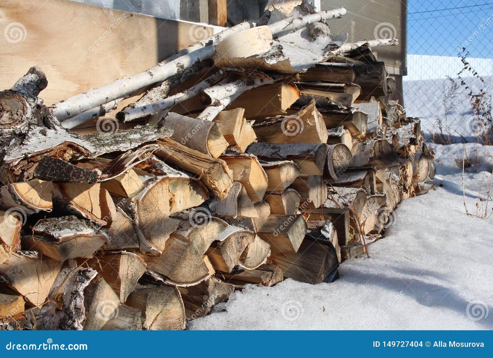 Журналы березовой древесины сложили в куче в снеге подготовленном для разжигать на зима в стоге