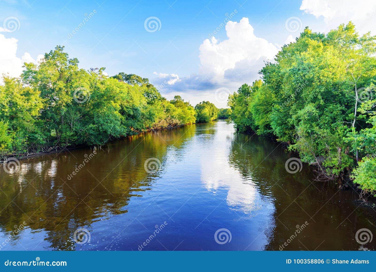 заболоченный рукав реки Луизиана