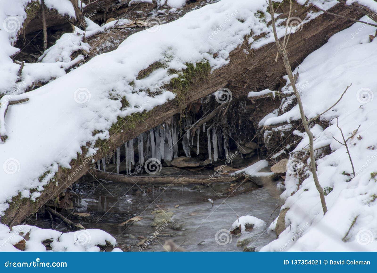 Заводь в замороженном ландшафте зимы