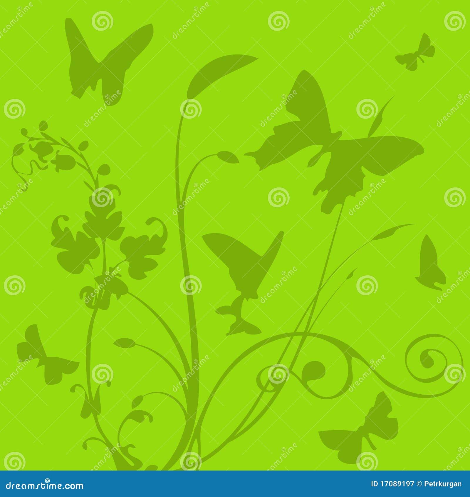завод бабочки