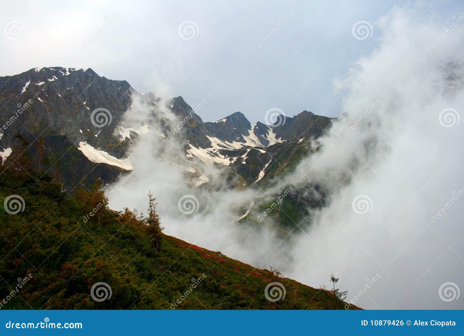 заволакивает гора