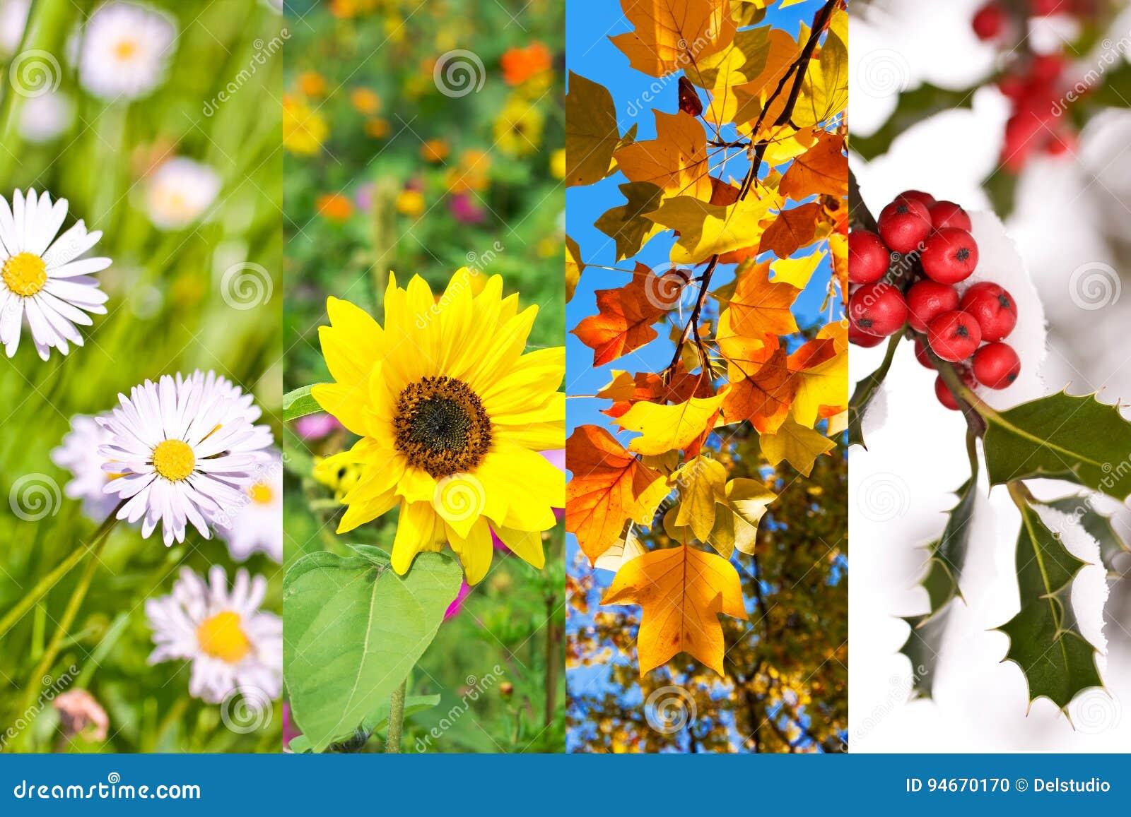 Заводы и цветки весной, лето, осень, зима, коллаж фото, концепция 4 сезонов