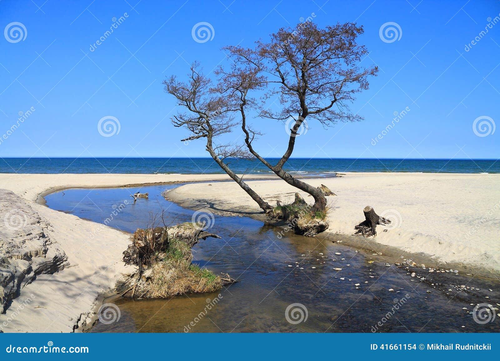 Заводь пропуская в Балтийское море