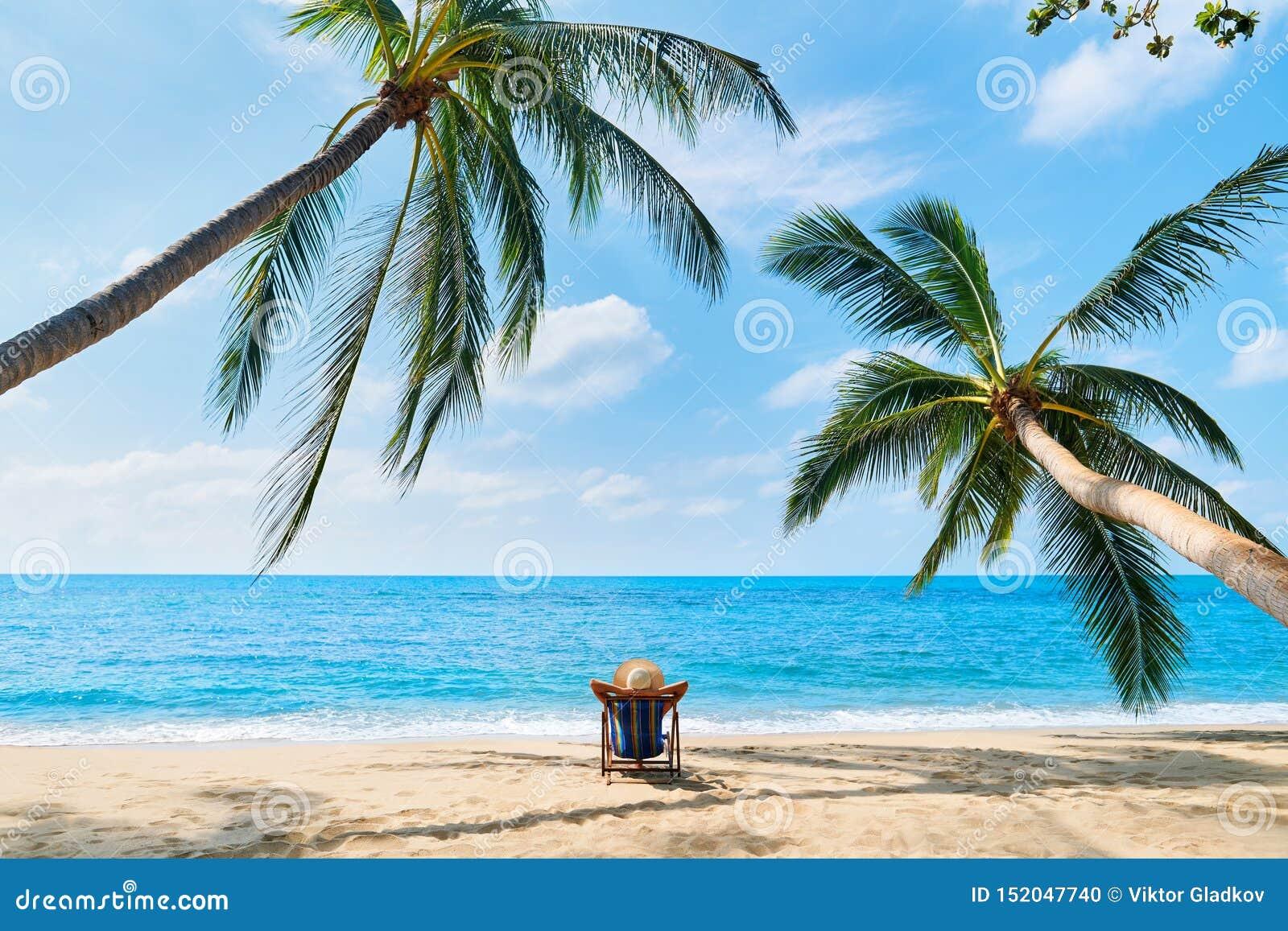 Задний взгляд молодой красивой женщины загорает и ослабляет на тропическом пляже самостоятельно