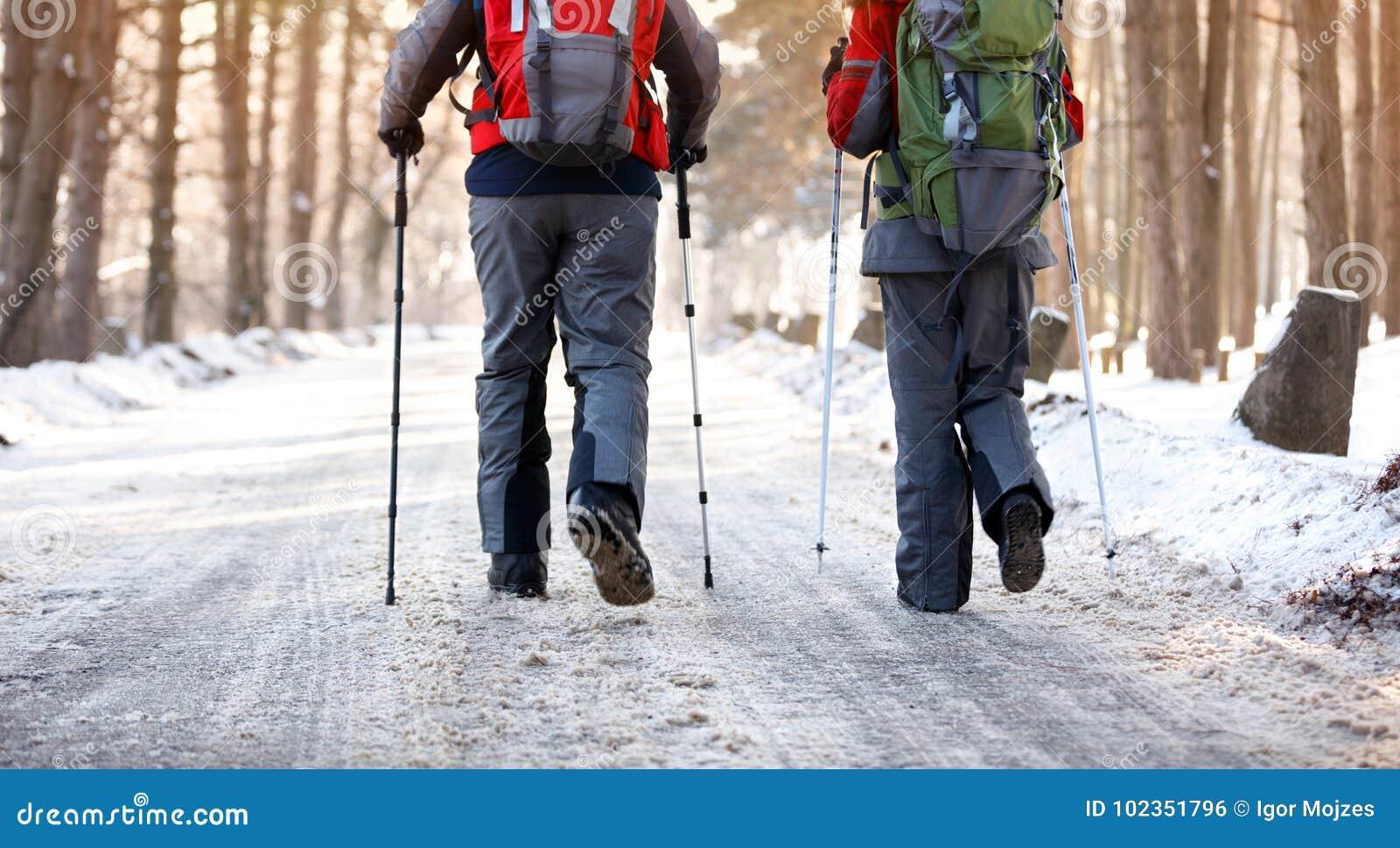 Задний взгляд hikers в лесе на зиме