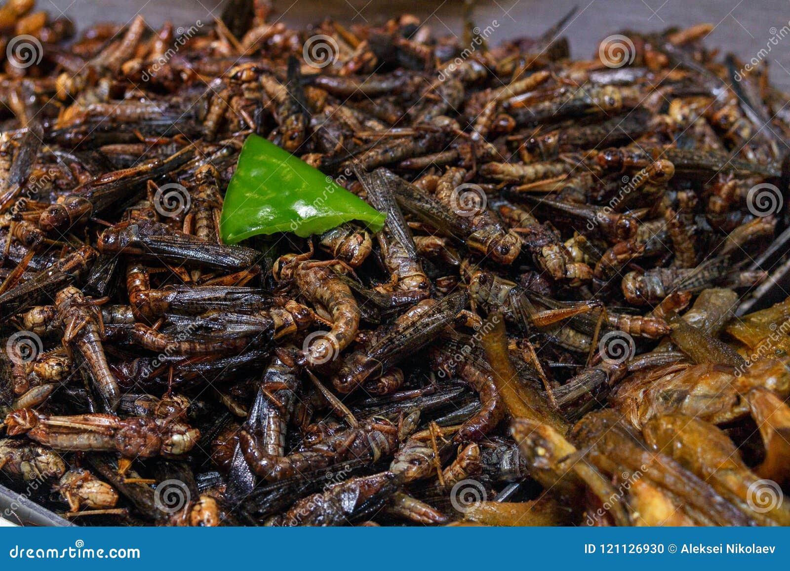 Зажаренные насекомые в подносе на счетчике китайского рынка