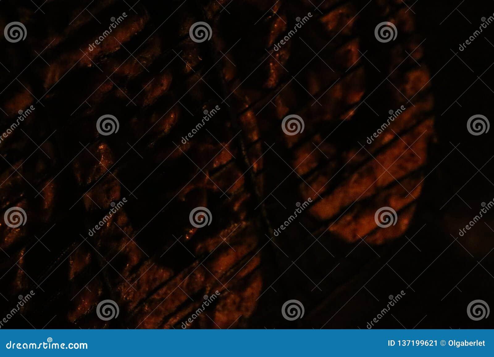 Зажаренные salmon стейки на гриле Гриль пламени огня Кухня ресторана и сада