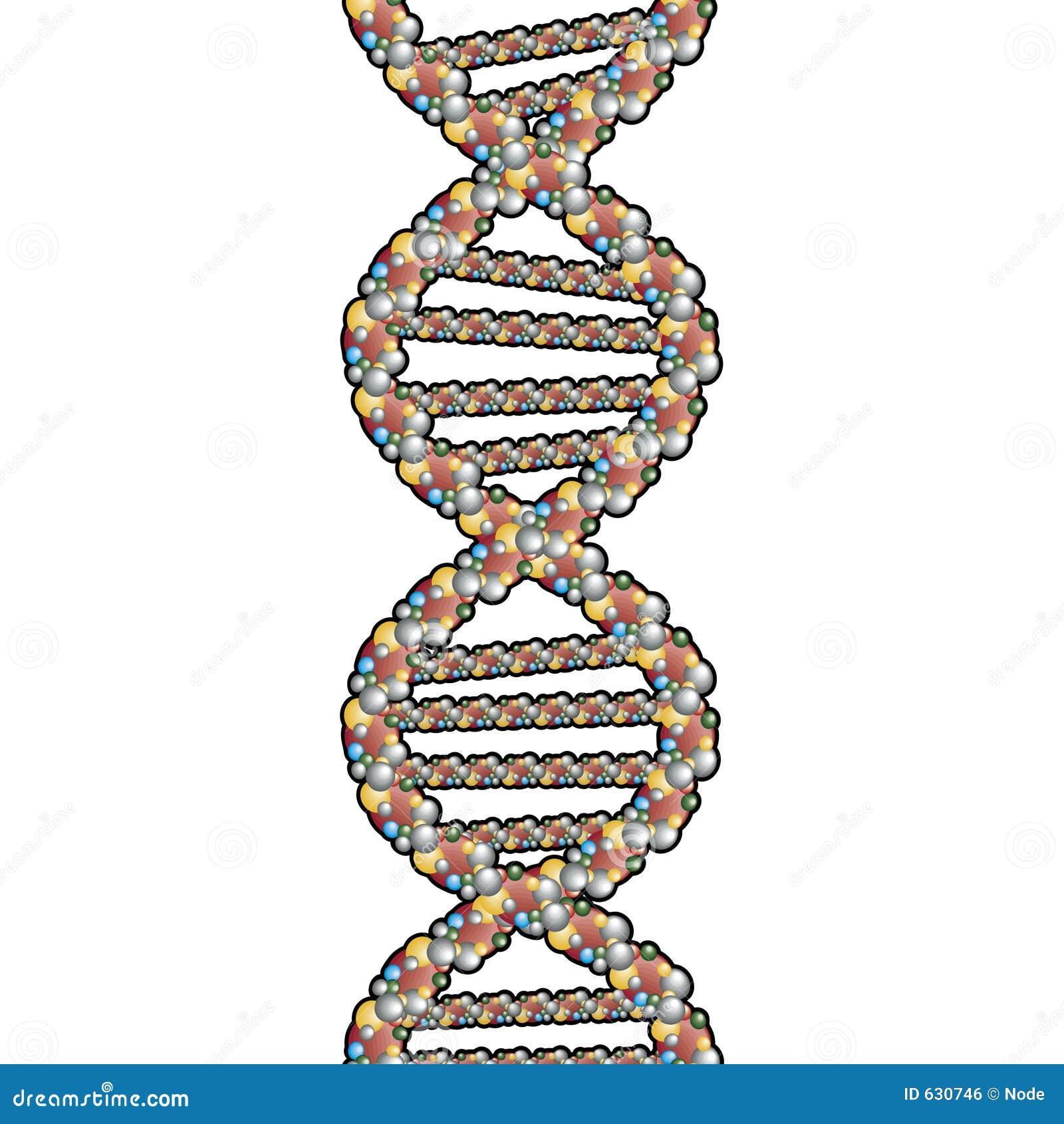 Download закрепляя путь двойного Helix Иллюстрация штока - иллюстрации насчитывающей helix, стренга: 630746