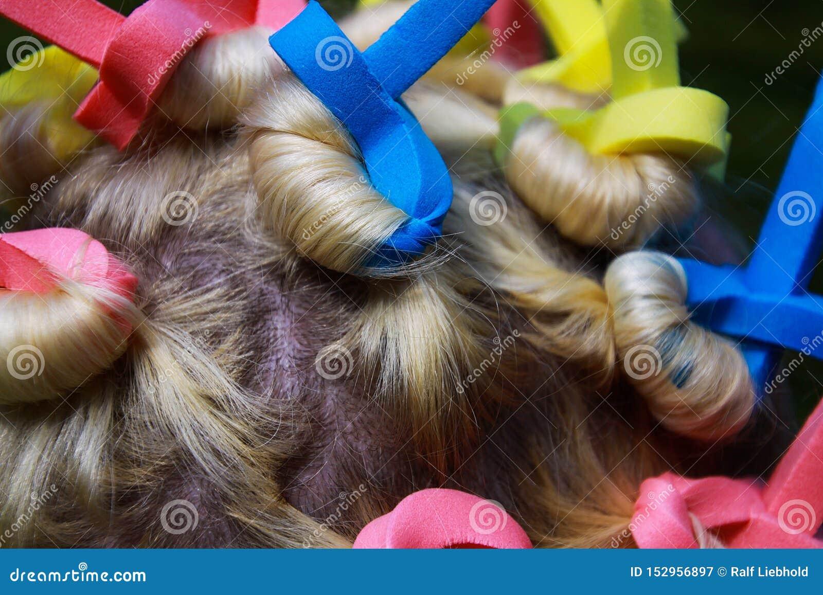 Закройте вверх головы европейской женщины со светлыми волосами и красочными старомодными curlers пены