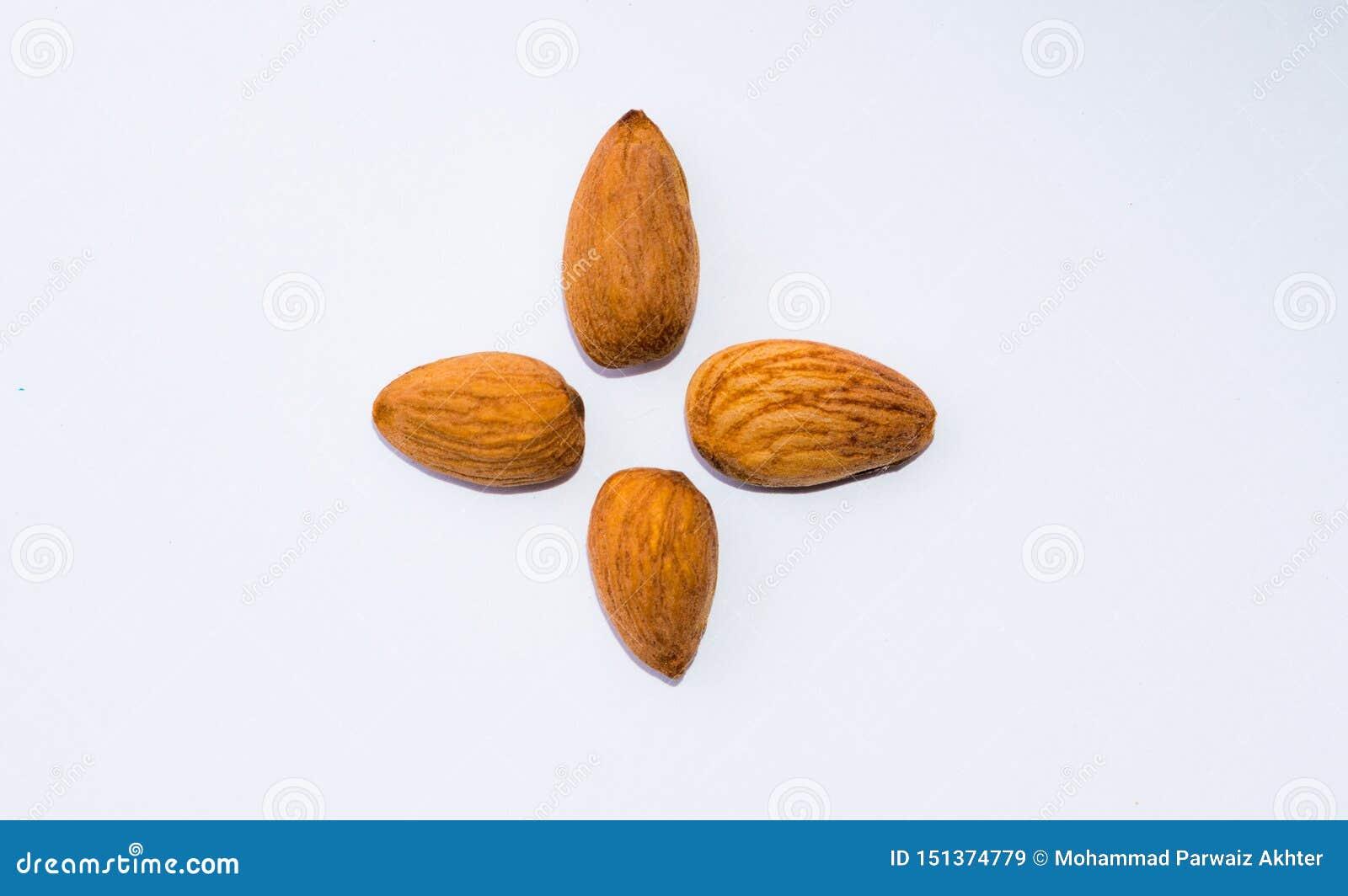 Закройте вверх коричневых семян миндалин изолированных на белой предпосылке