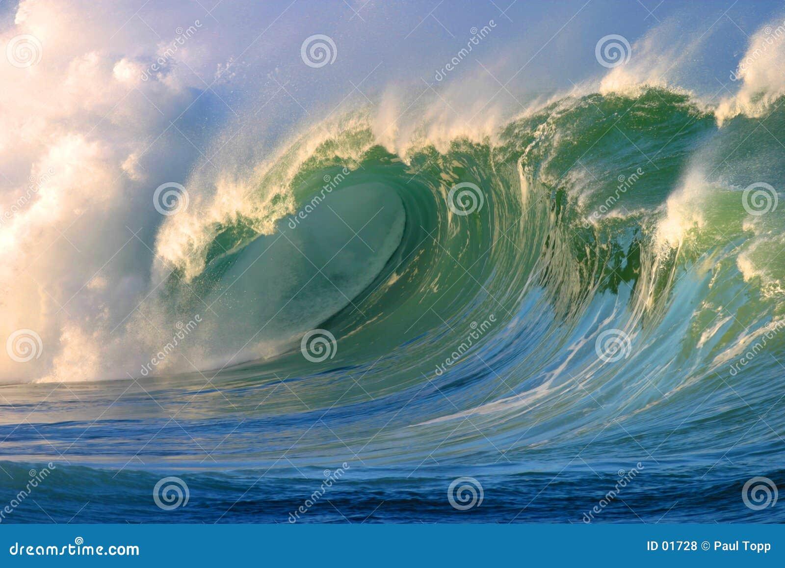 залив разбивая волна waimea Гавайских островов мощная занимаясь серфингом