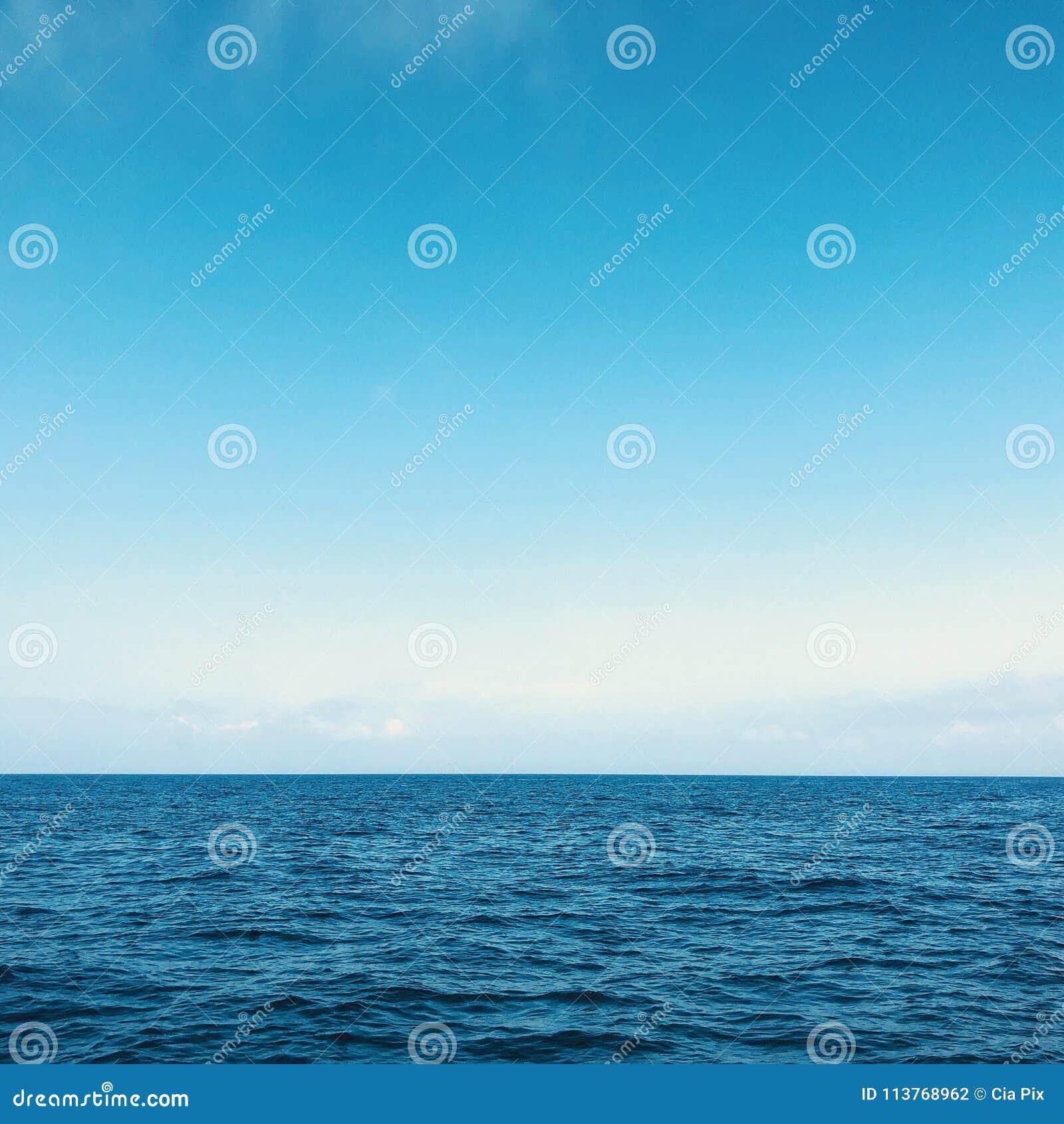 Залив Флориды