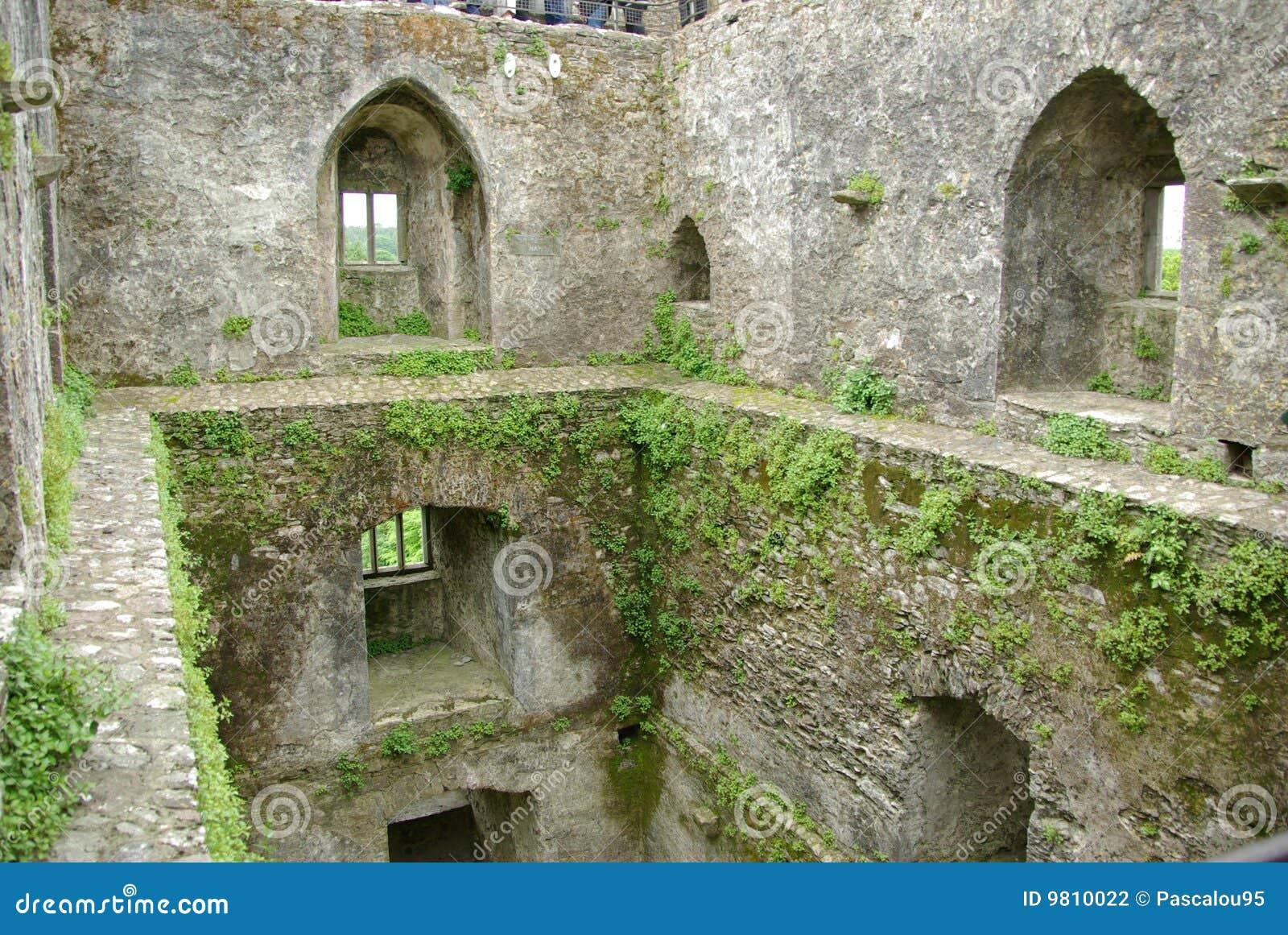 замок Ирландия лести