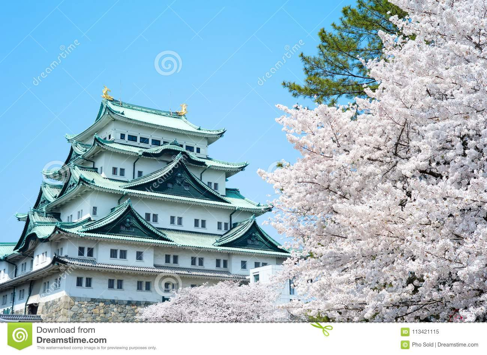 Замок Сакуры Нагои