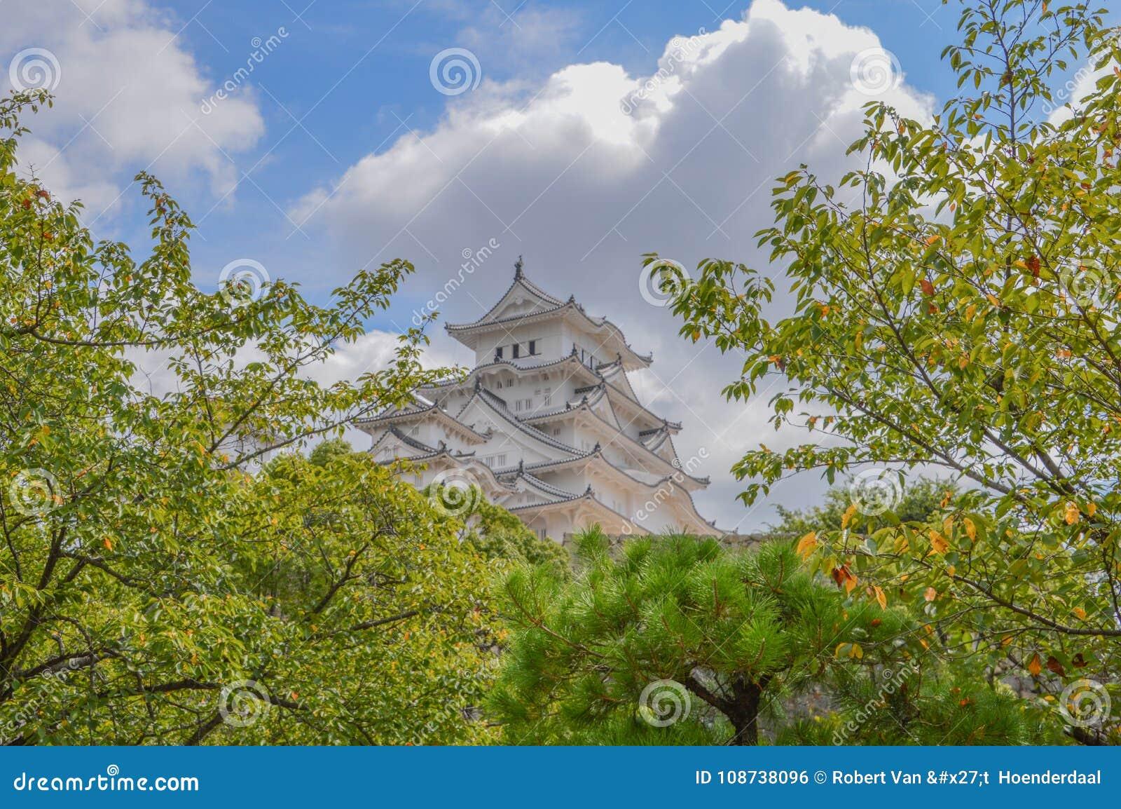 Замок Япония Himeji за деревьями