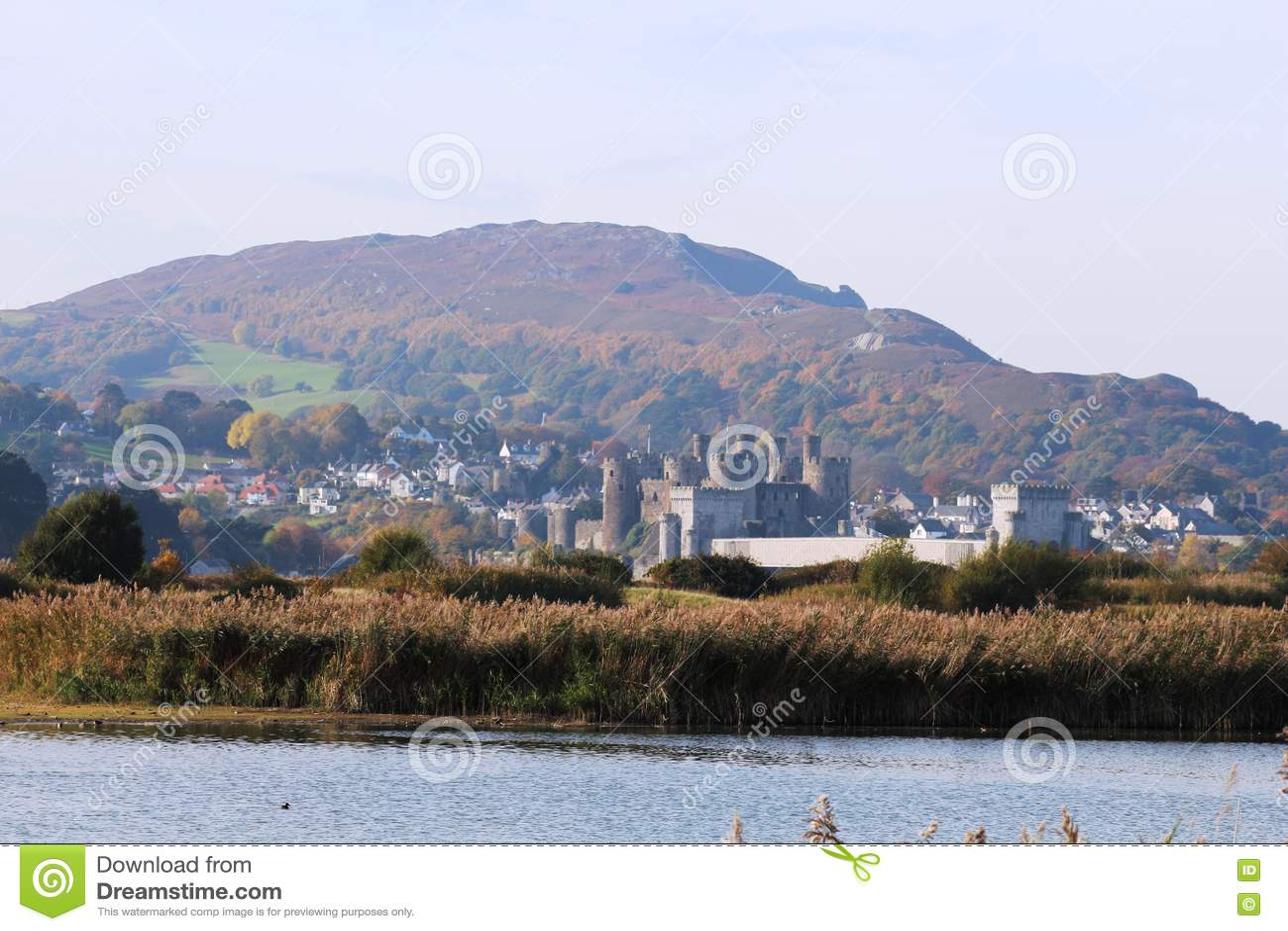 Замок Conwy, северное Уэльс от RSPB Conway