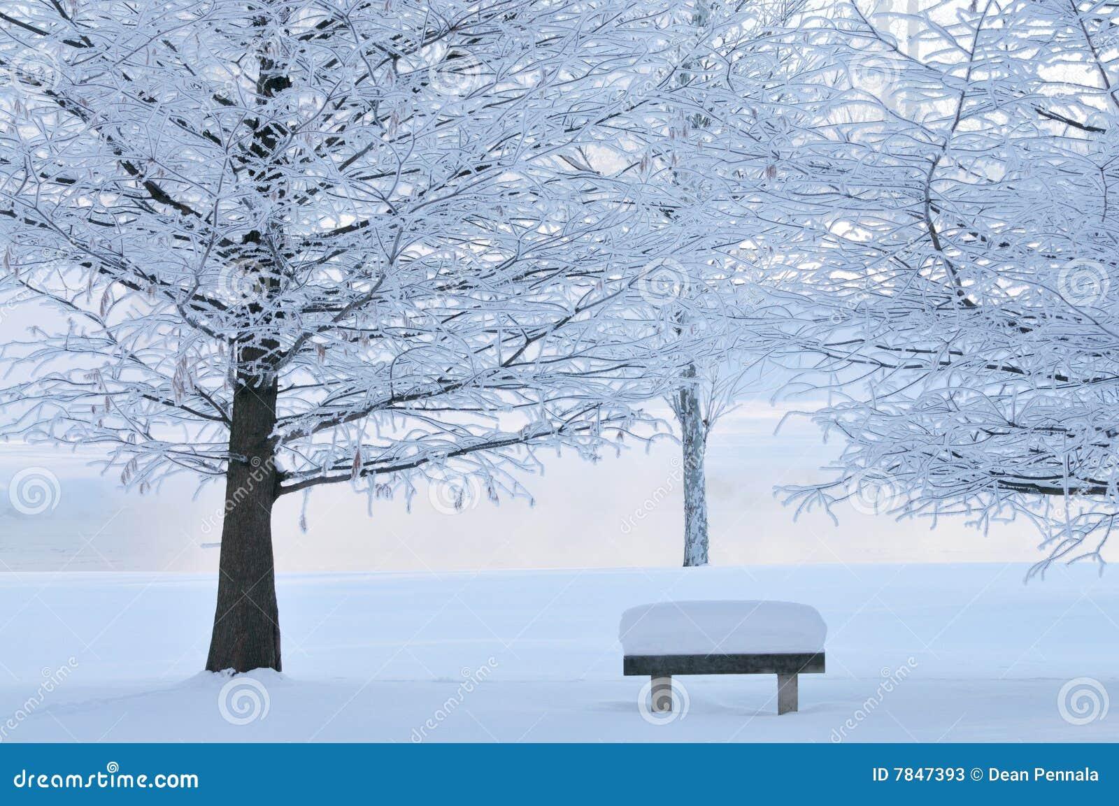 замороженные стендом валы парка