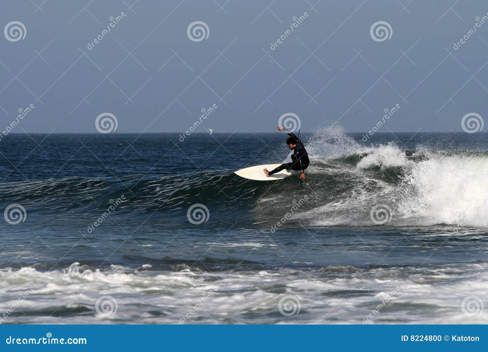 заниматься серфингом Мексики baja abreojos