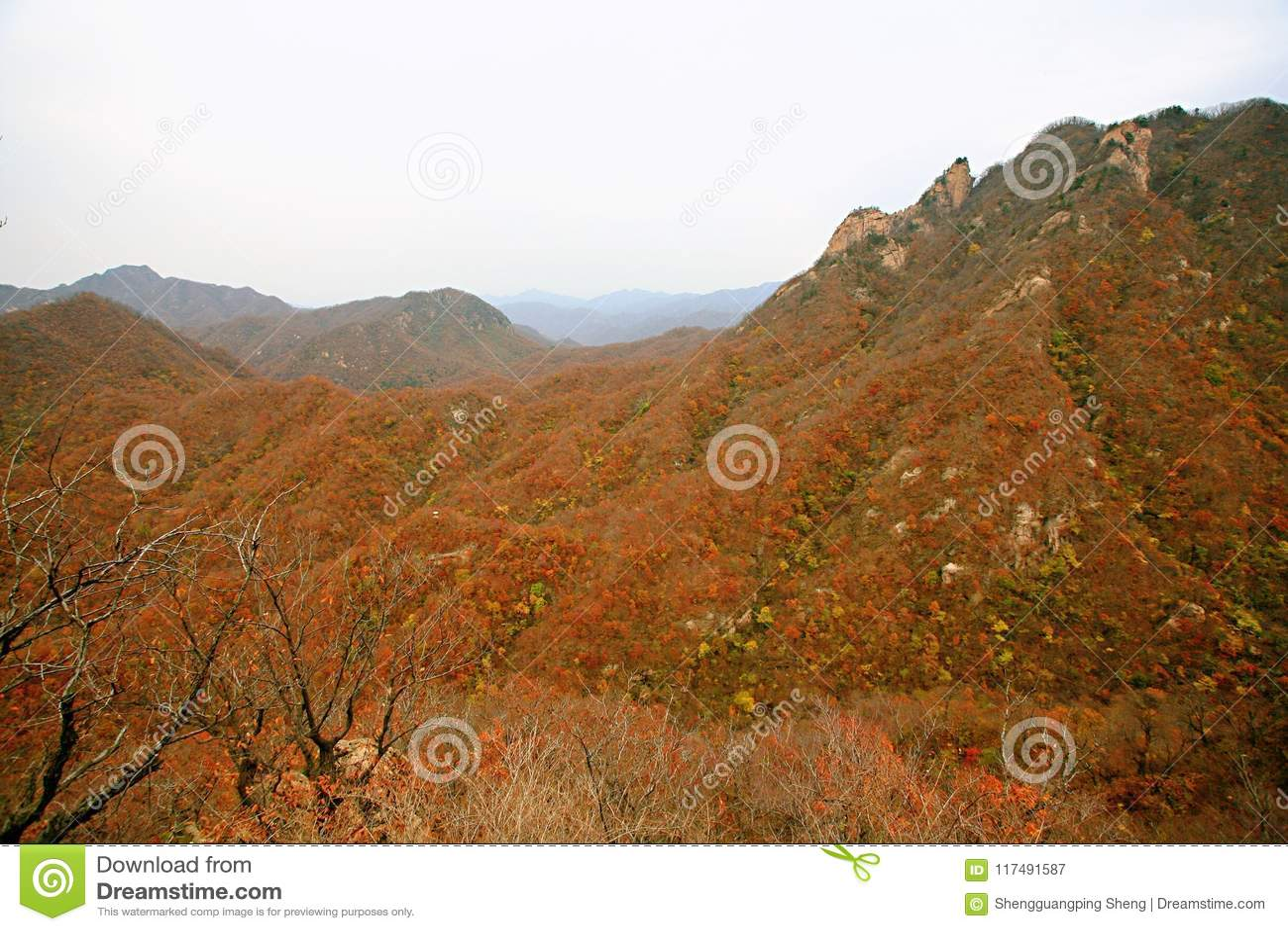 Западный Taishan, Ruyang